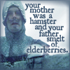 your mother was a hamster and your father smelt of elderberries
