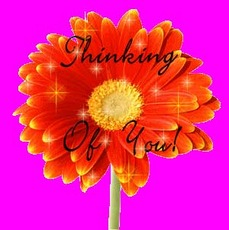 thinking of you flower