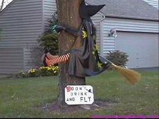 witch smashed into tree don't drink and fly