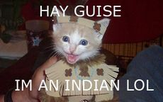 hey guys i'm an indian lol