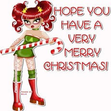 hope you have a very merry christmas