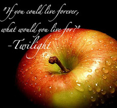 if you could live forever what would you live for