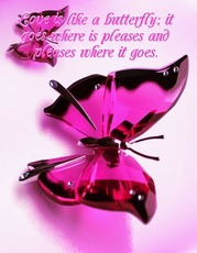 Love is like a butterfly