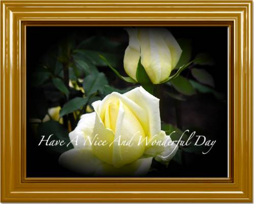 Have A Nice And Wonderful Day