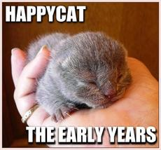 happycat the early years