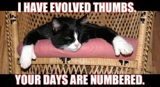 i have evolved thumbs your days are numbered