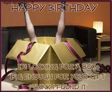 happy birthday i'm looking for a box big enough for your gift i think i found it