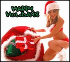 happy holidays sexy christmas