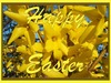 Search happy easter